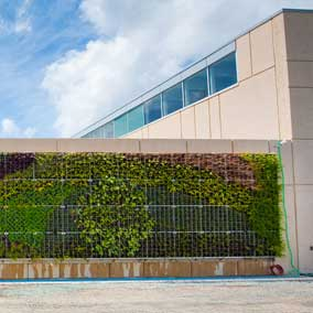 Green Wall at NSCC waterfront Campus ( Centre for Built Environment